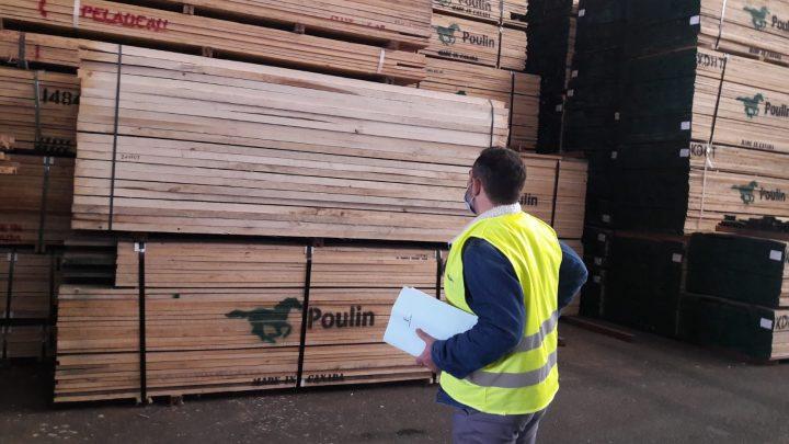 El Gobierno de Castilla-La Mancha impulsa el aprovechamiento sostenible de los bosques frente a la tala ilegal, aplicando los programas regionales y nacionales de control de la madera comercializada